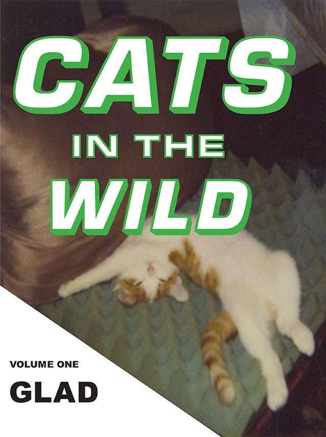 Cats in the Wild: Glad