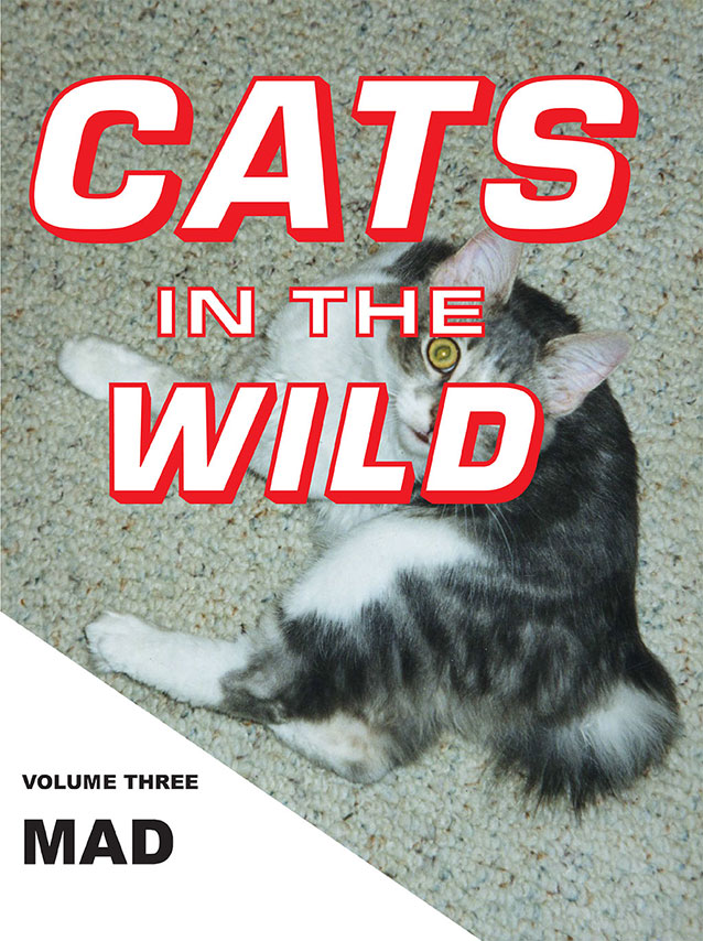 Cats in the Wild: Mad
