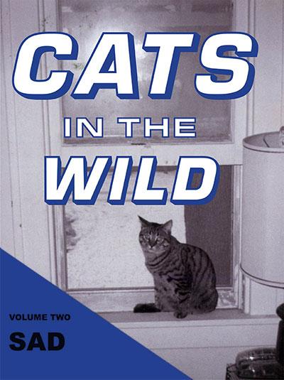 Julia Dzwonkoski and Kye Potter Cats in the Wild: Sad